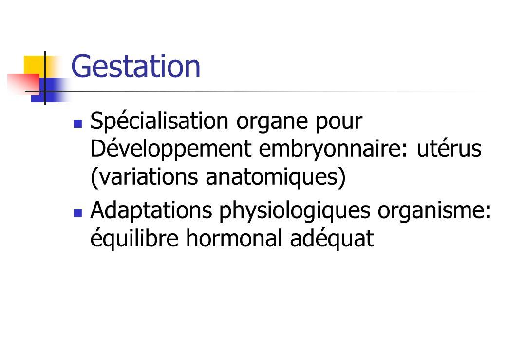 Gestation Spécialisation organe pour Développement embryonnaire: utérus (variations anatomiques) Adaptations physiologiques organisme: équilibre hormo