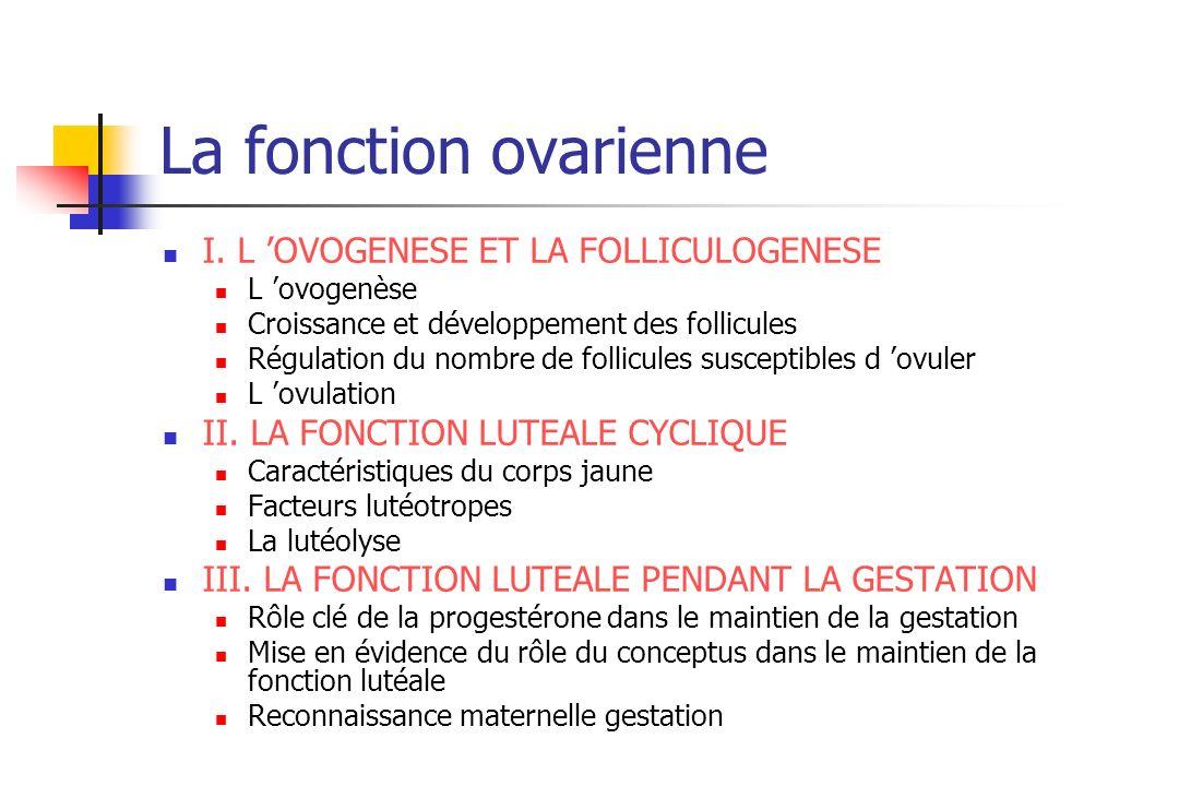 La fonction ovarienne I. L OVOGENESE ET LA FOLLICULOGENESE L ovogenèse Croissance et développement des follicules Régulation du nombre de follicules s