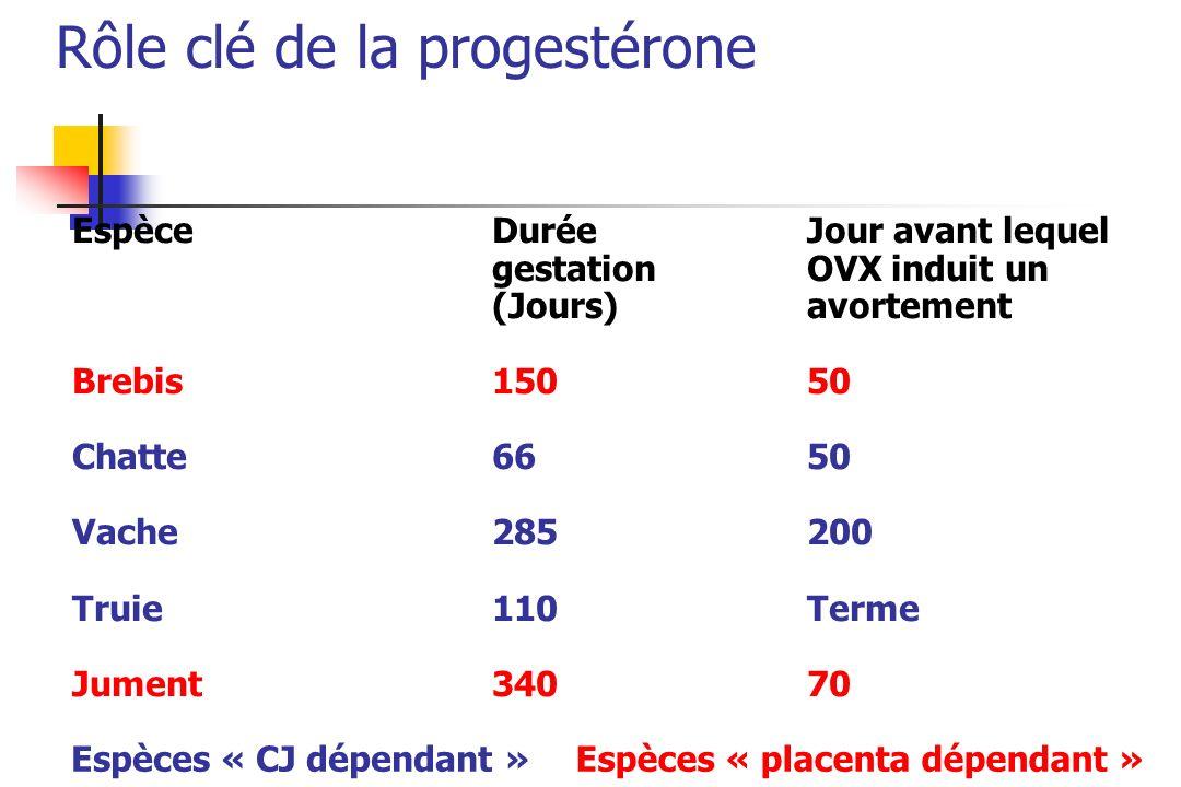 Espèce Durée Jour avant lequel gestation OVX induit un (Jours)avortement Brebis15050 Chatte6650 Vache285200 Truie 110Terme Jument34070 Espèces « CJ dé