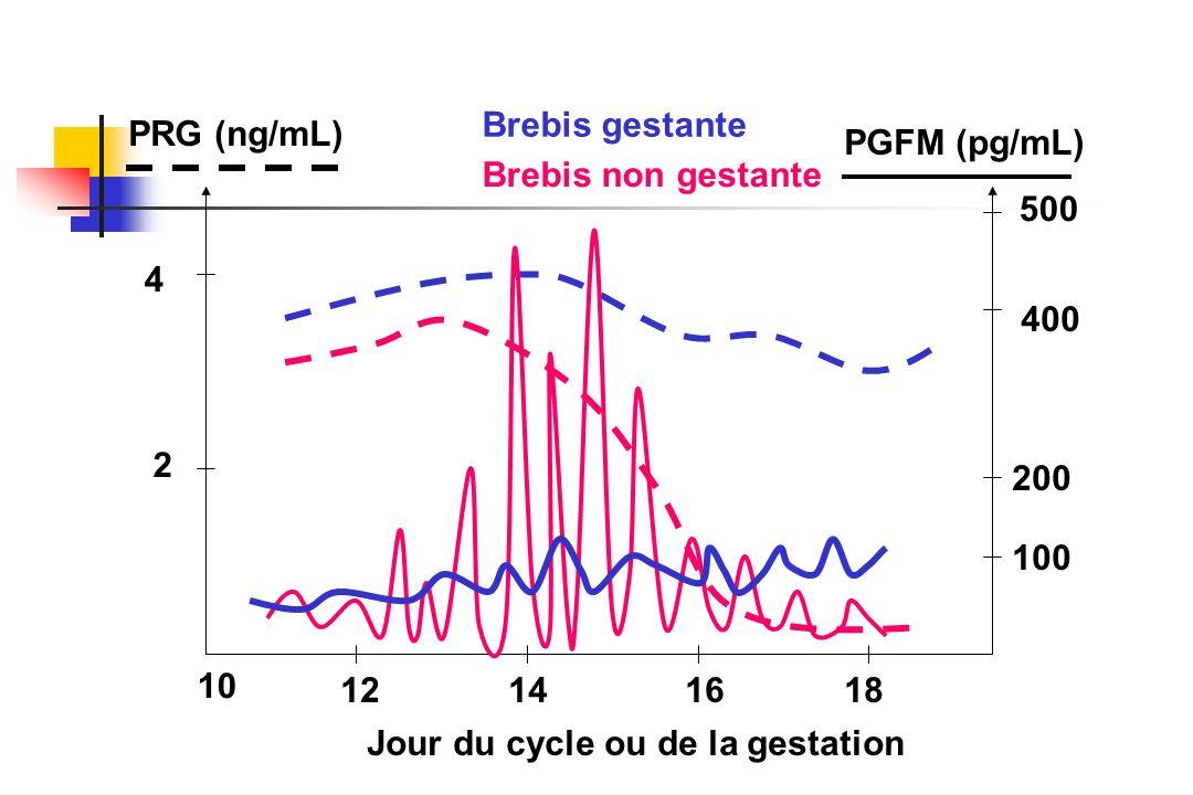 2 4 PRG (ng/mL) 100 200 400 500 PGFM (pg/mL) 12141618 Brebis gestante Brebis non gestante Jour du cycle ou de la gestation 10