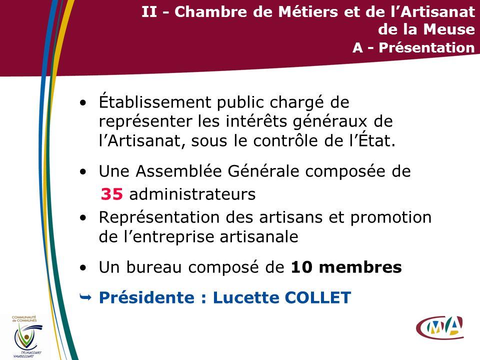 11 II - Chambre de Métiers et de lArtisanat de la Meuse A - Présentation Établissement public chargé de représenter les intérêts généraux de lArtisana
