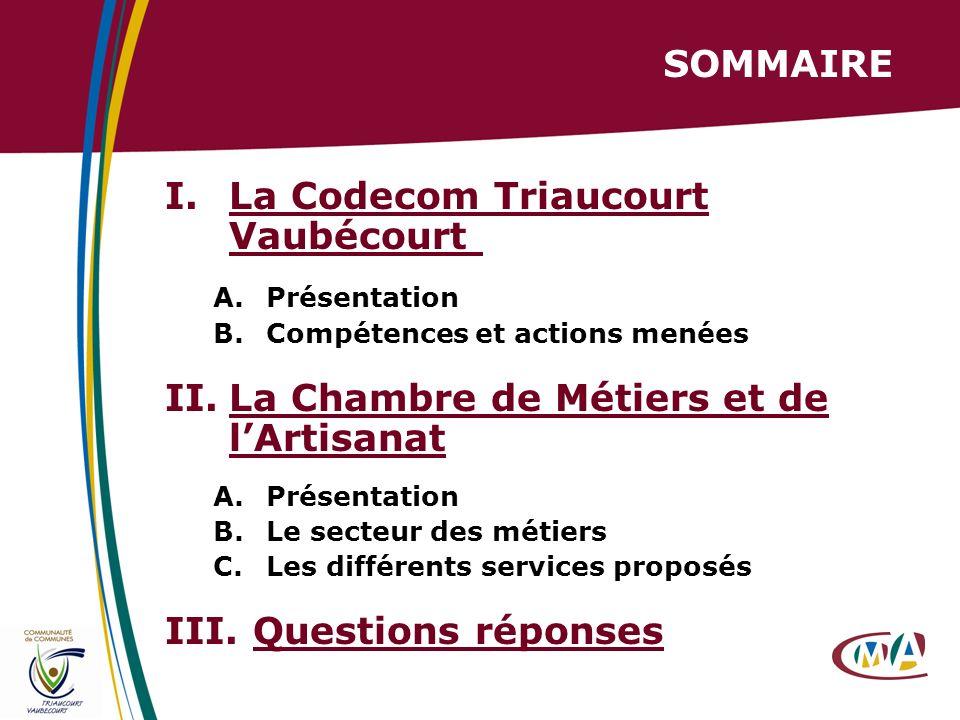 2 SOMMAIRE I.La Codecom Triaucourt Vaubécourt A.Présentation B.Compétences et actions menées II.La Chambre de Métiers et de lArtisanat A.Présentation