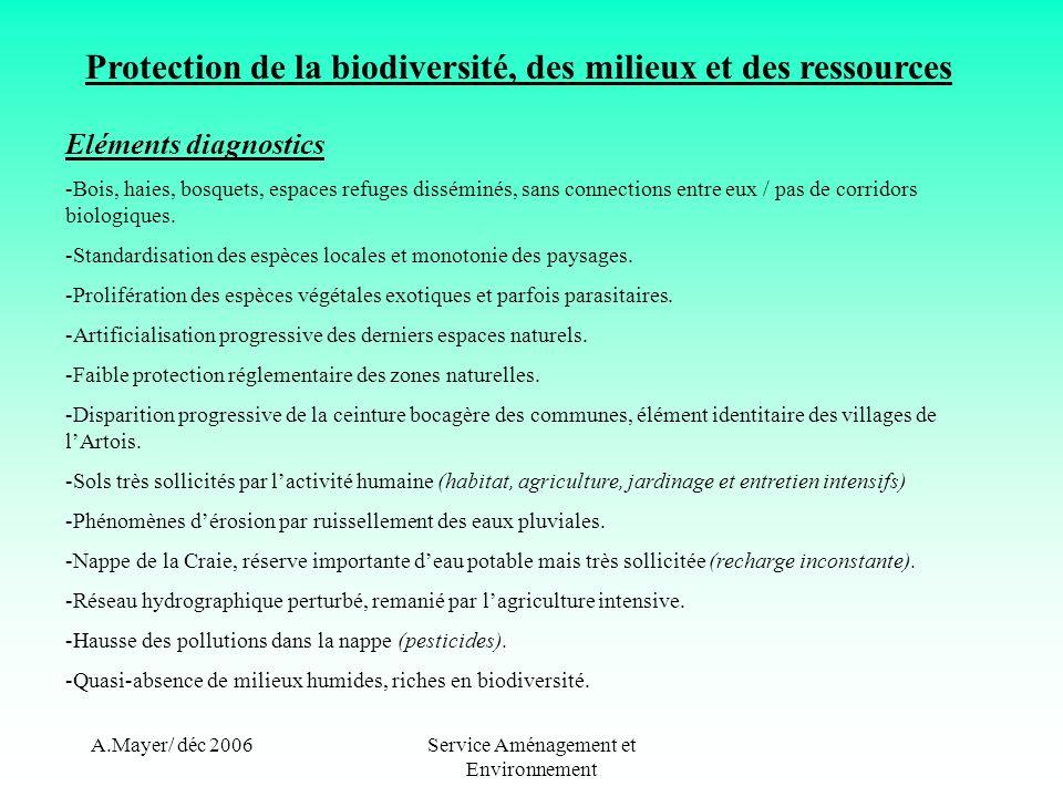 A.Mayer/ déc 2006Service Aménagement et Environnement Protection de la biodiversité, des milieux et des ressources Eléments diagnostics -Bois, haies, bosquets, espaces refuges disséminés, sans connections entre eux / pas de corridors biologiques.