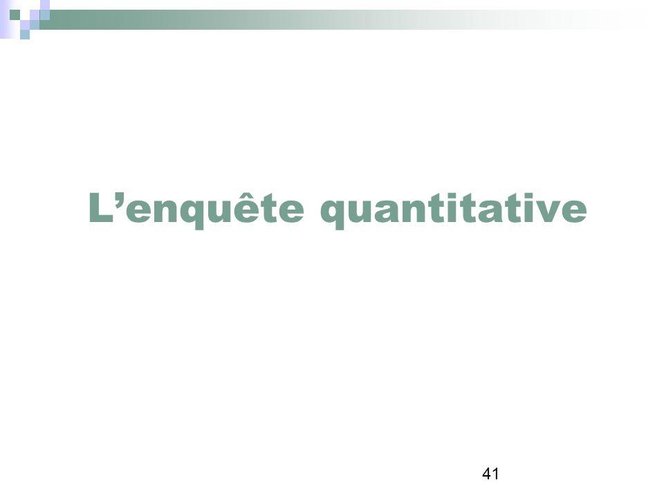 41 Lenquête quantitative