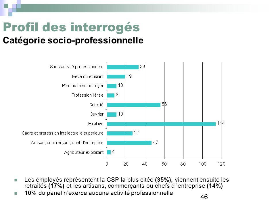 46 Profil des interrogés Catégorie socio-professionnelle Les employés représentent la CSP la plus citée (35%), viennent ensuite les retraités (17%) et