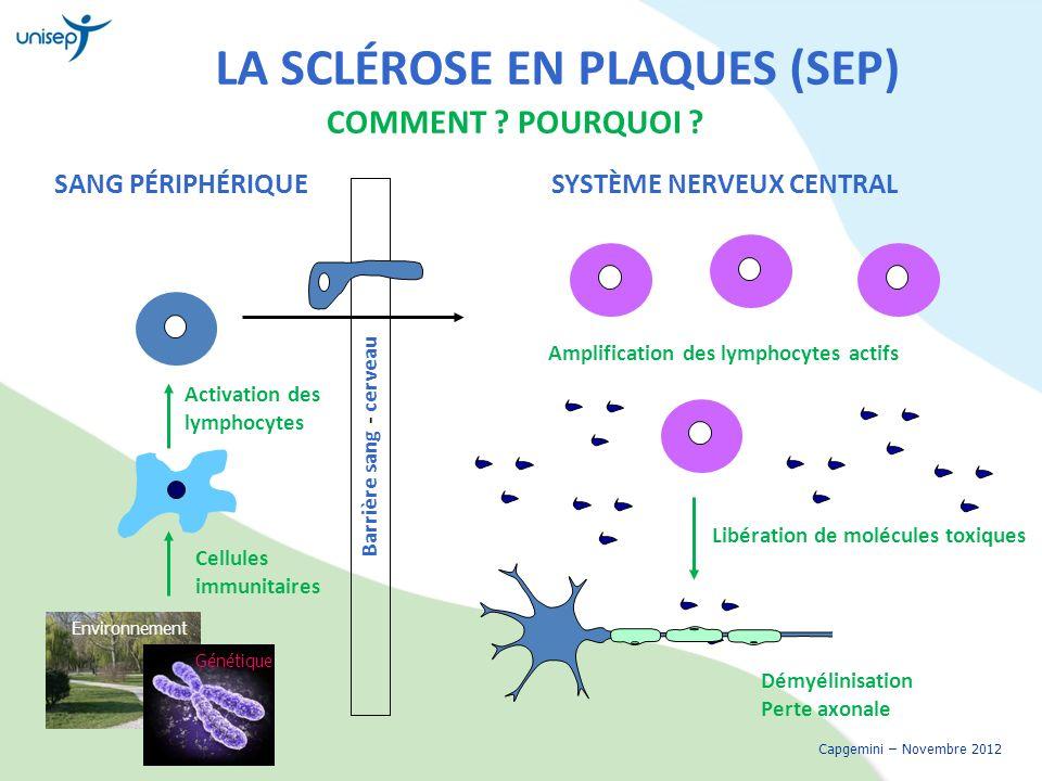 LA SCLÉROSE EN PLAQUES (SEP) COMMENT ? POURQUOI ? Capgemini – Novembre 2012 SANG PÉRIPHÉRIQUESYSTÈME NERVEUX CENTRAL Environnement Génétique Barrière