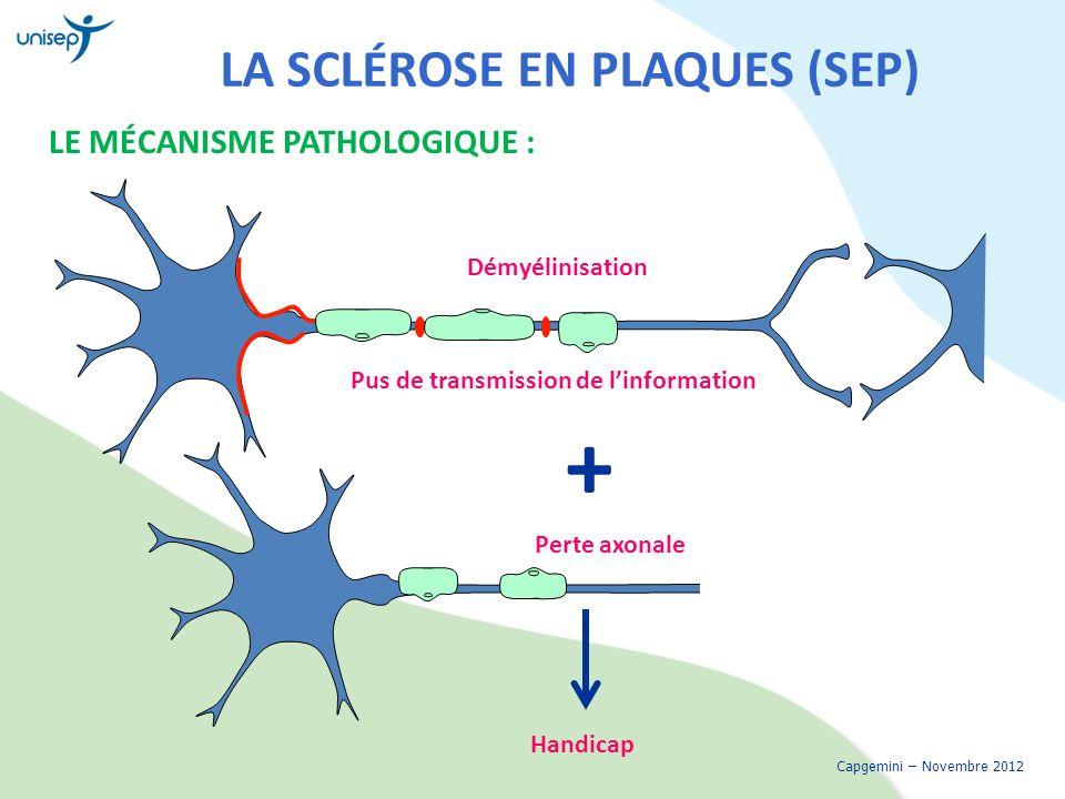 LA SCLÉROSE EN PLAQUES (SEP) LE MÉCANISME PATHOLOGIQUE : Capgemini – Novembre 2012 Démyélinisation Perte axonale Pus de transmission de linformation H