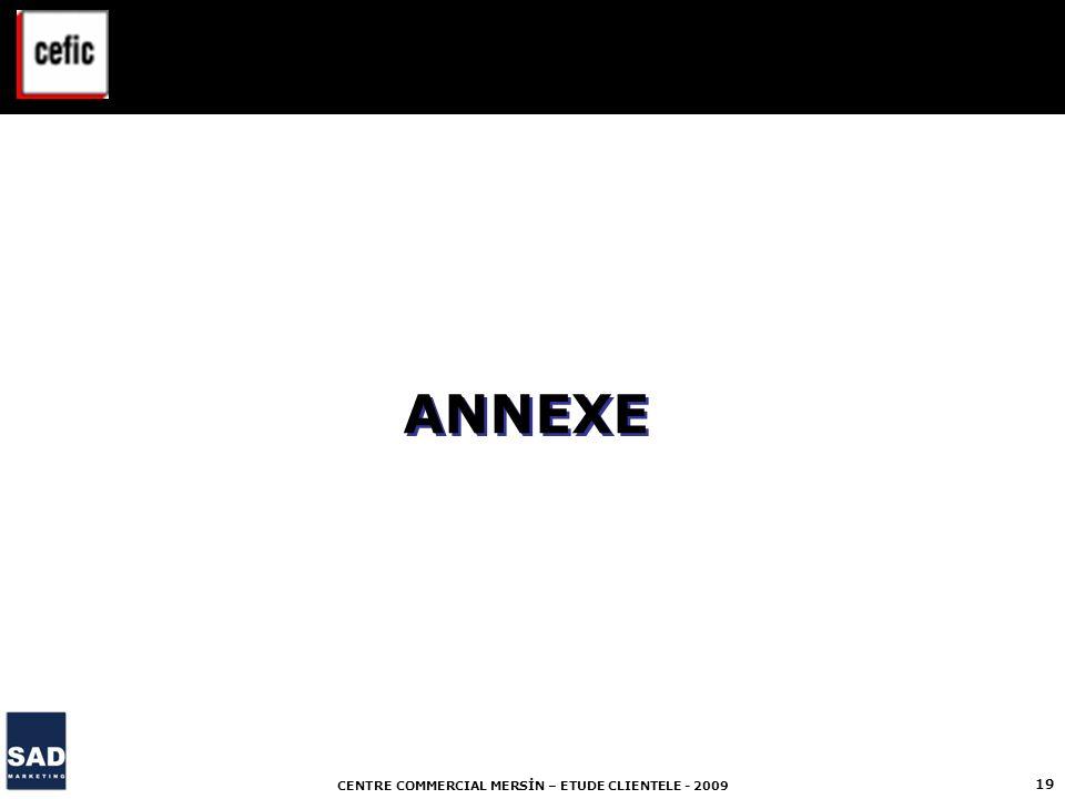 CENTRE COMMERCIAL MERSİN – ETUDE CLIENTELE - 2009 19 ANNEXE
