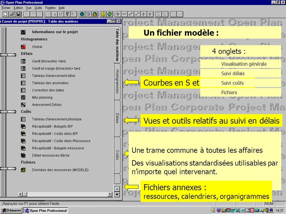 Un fichier modèle : 4 onglets : Courbes en S et récapitulatifs Vues et outils relatifs au suivi en délais Vues et outils relatifs au suivi en coûts Vi