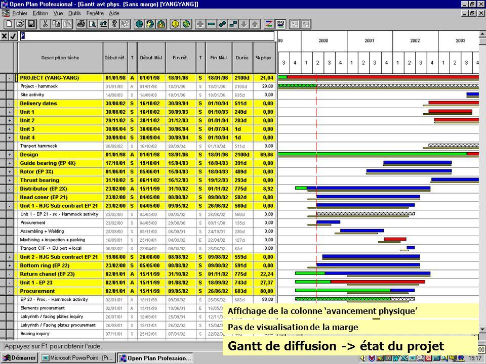 Gantt de diffusion -> état du projet Pas de visualisation de la marge Affichage de la colonne avancement physique