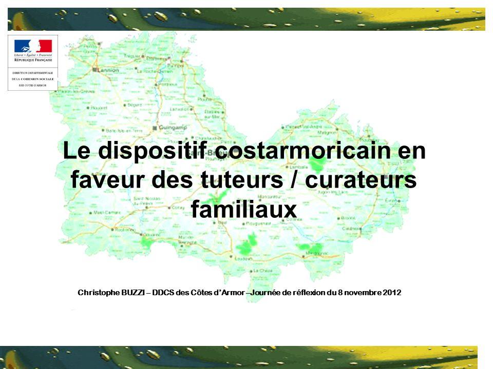 Le dispositif costarmoricain en faveur des tuteurs / curateurs familiaux Christophe BUZZI – DDCS des Côtes dArmor –Journée de réflexion du 8 novembre 2012