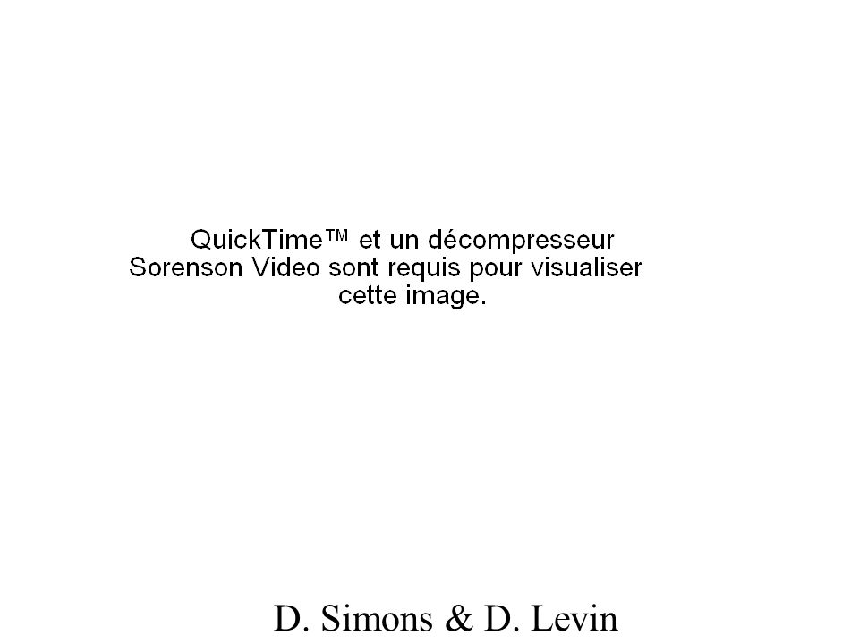 D. Simons & D. Levin
