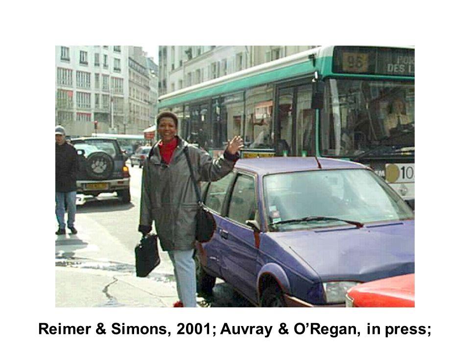Reimer & Simons, 2001; Auvray & ORegan, in press;