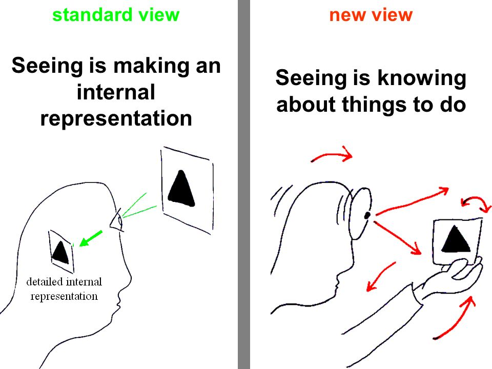 Seeing is making an internal representation Seeing is knowing about things to do standard viewnew view