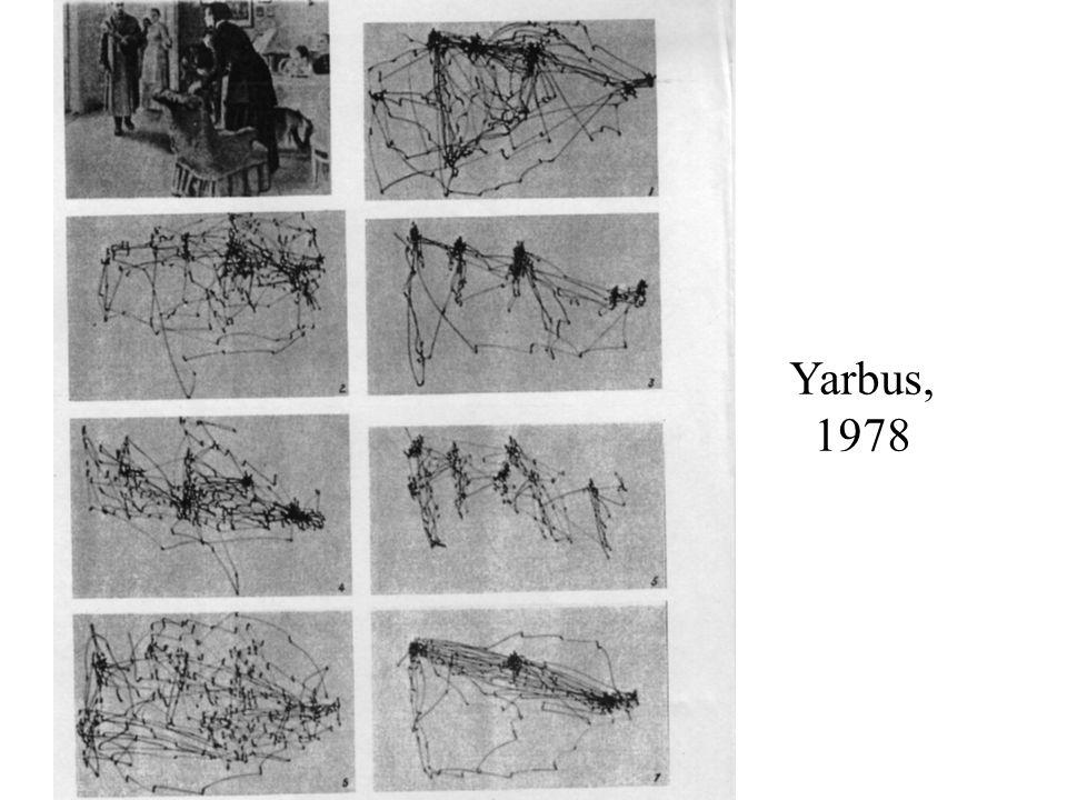 Auvray & ORegan, 2003; Chabrier & ORegan, unpublished