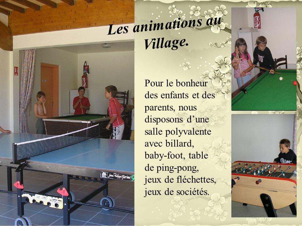 Pour le bonheur des enfants et des parents, nous disposons dune salle polyvalente avec billard, baby-foot, table de ping-pong, jeux de fléchettes, jeu