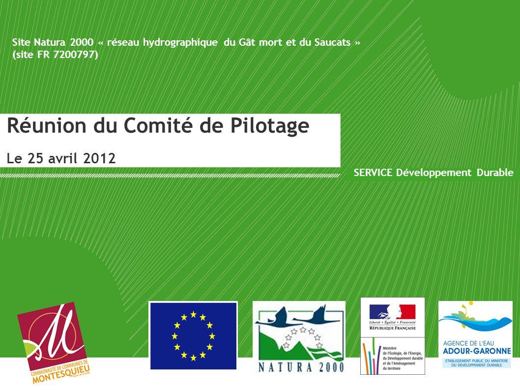 Réunion du Comité de Pilotage Le 25 avril 2012 SERVICE Développement Durable Site Natura 2000 « réseau hydrographique du Gât mort et du Saucats » (sit