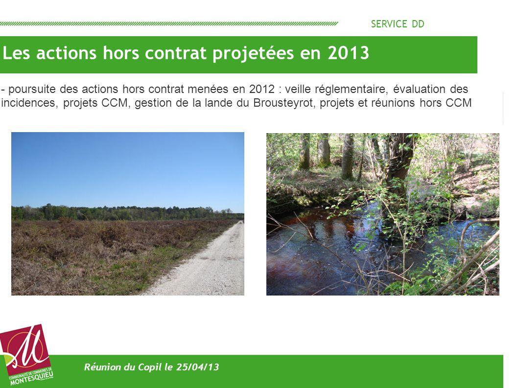 SERVICE DD Les actions hors contrat projetées en 2013 Réunion du Copil le 25/04/13 - poursuite des actions hors contrat menées en 2012 : veille réglem