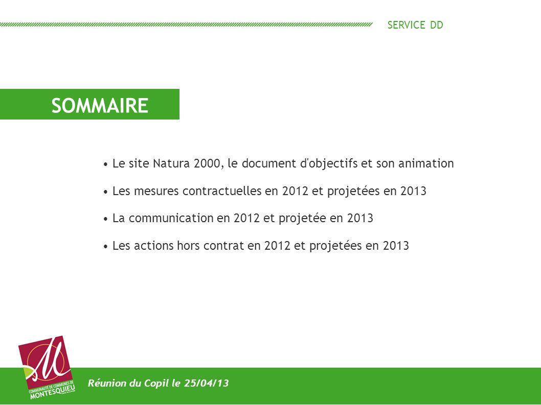 SERVICE DD SOMMAIRE Réunion du Copil le 25/04/13 Le site Natura 2000, le document d'objectifs et son animation Les mesures contractuelles en 2012 et p