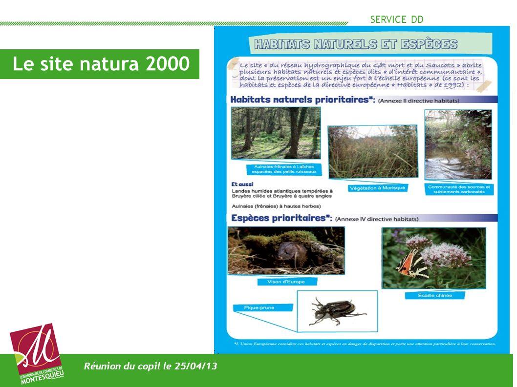 SERVICE DD Les actions hors contrat en 2012 Réunion du Copil le 25/04/13 - veille réglementaire - participation aux projets de la CCM - évaluation des incidences