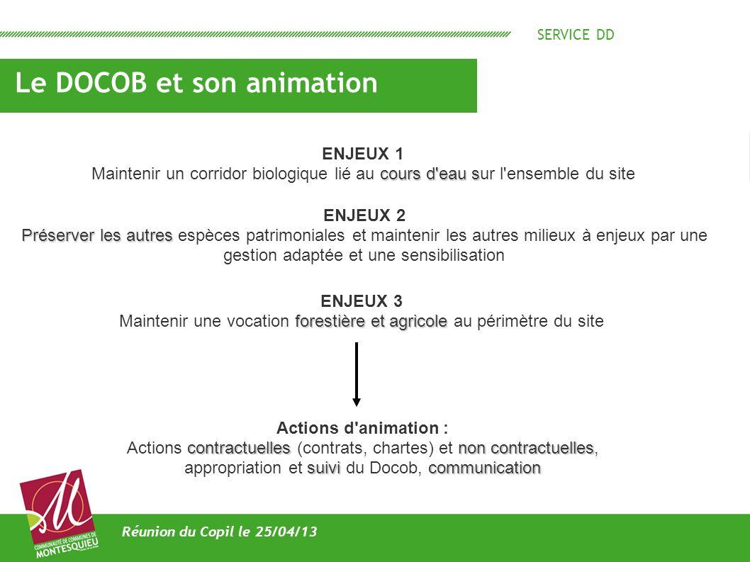SERVICE DD Le DOCOB et son animation Réunion du Copil le 25/04/13 ENJEUX 1 cours d'eau s Maintenir un corridor biologique lié au cours d'eau sur l'ens