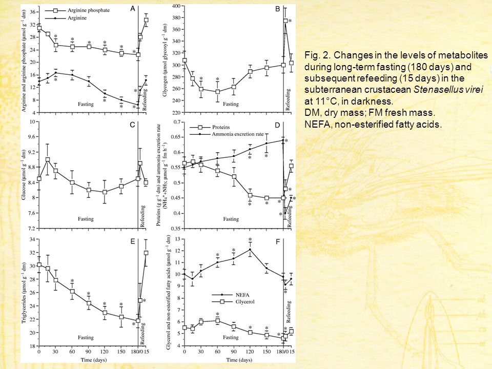 Fig. 2. Changes in the levels of metabolites during long-term fasting (180 days) and subsequent refeeding (15 days) in the subterranean crustacean Ste