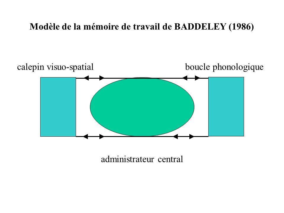 entrée auditive entrée visuelle analyse phonologique stock phonologique à court terme boucle de contrôle articulatoire recodage phonologique code visuel Représentation schématique de la boucle phonologique