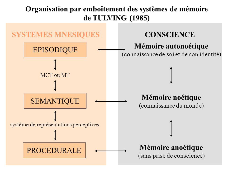Modèle hiérarchique de la M sémantique selon COLLINS et QUILLIAN (1969)