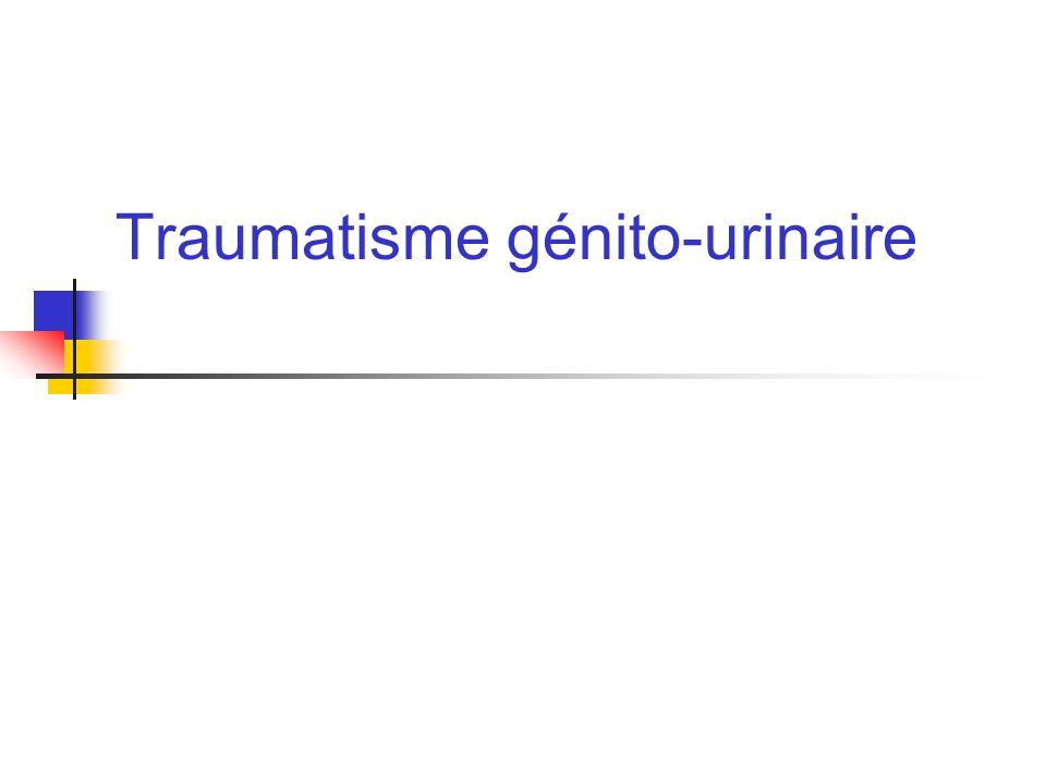 Mr CHE 18 ans Défenestration polytraumatisme Douleurs lombaire G, pas hématurie TA stable Bilan traumatologique: Fracture instable de C7 ostéosynthésée Fractude du col fémur G