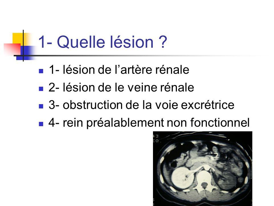 Lésion pédiculaire de lartère rénale - hypodensité globale aprèes injection - taille normale du rein - petit épanchement péri-rénal 2- Quel examen demandez- vous?
