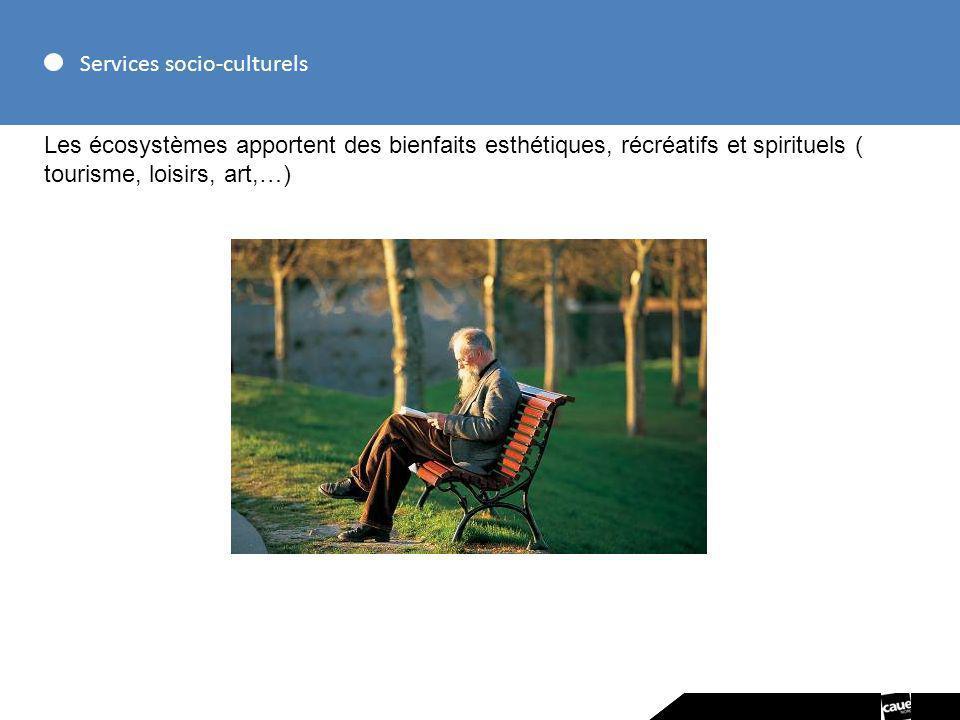 Services socio-culturels Les écosystèmes apportent des bienfaits esthétiques, récréatifs et spirituels ( tourisme, loisirs, art,…)