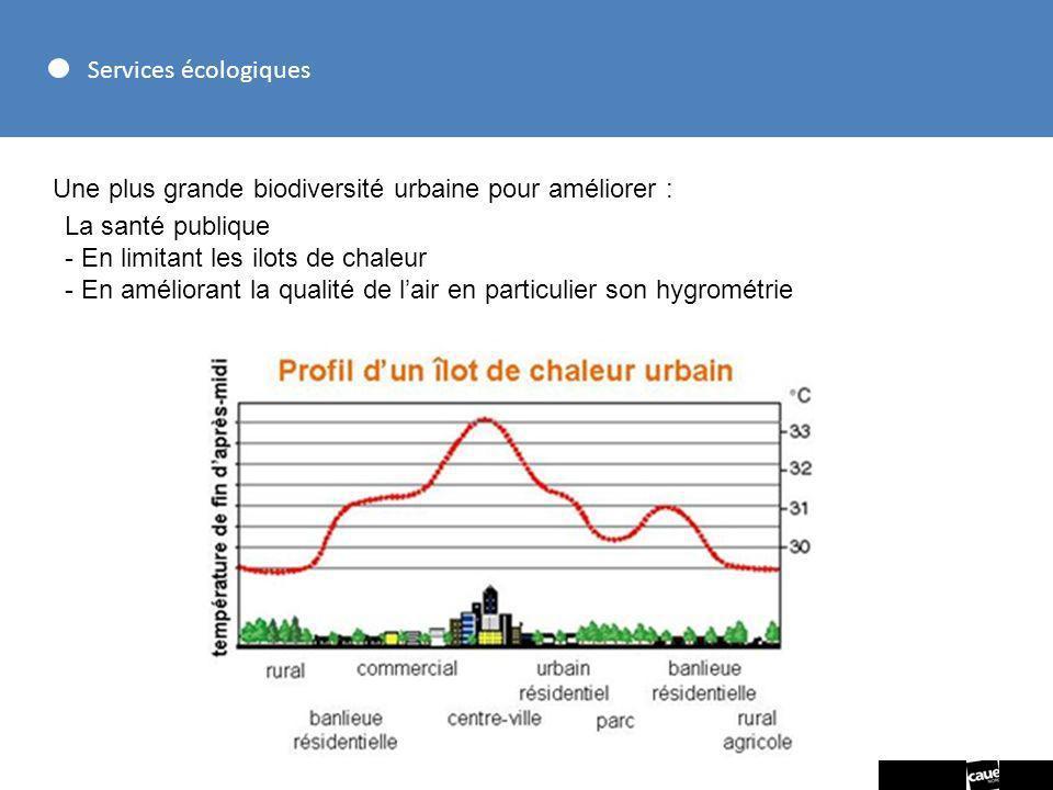 Services écologiques Une plus grande biodiversité urbaine pour améliorer : La santé publique - En limitant les ilots de chaleur - En améliorant la qua