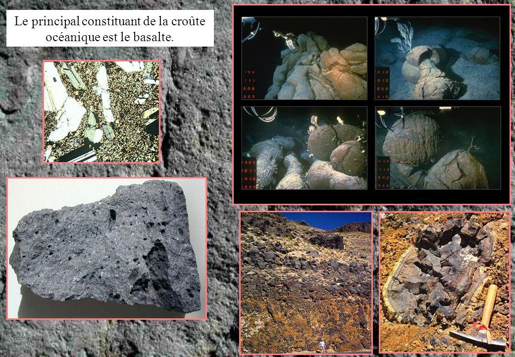 mais la diversité des roches y est bien plus grande que dans la croûte océanique puisquon y trouve des roches métamorphiques, des roches sédimentaires et des roches magmatiques (plutoniques et volcaniques).