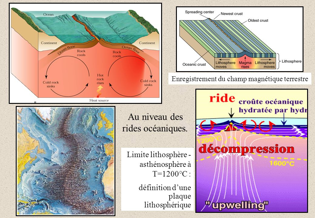 Au niveau des rides océaniques. Enregistrement du champ magnétique terrestre Limite lithosphère - asthénosphère à T=1200°C : définition dune plaque li