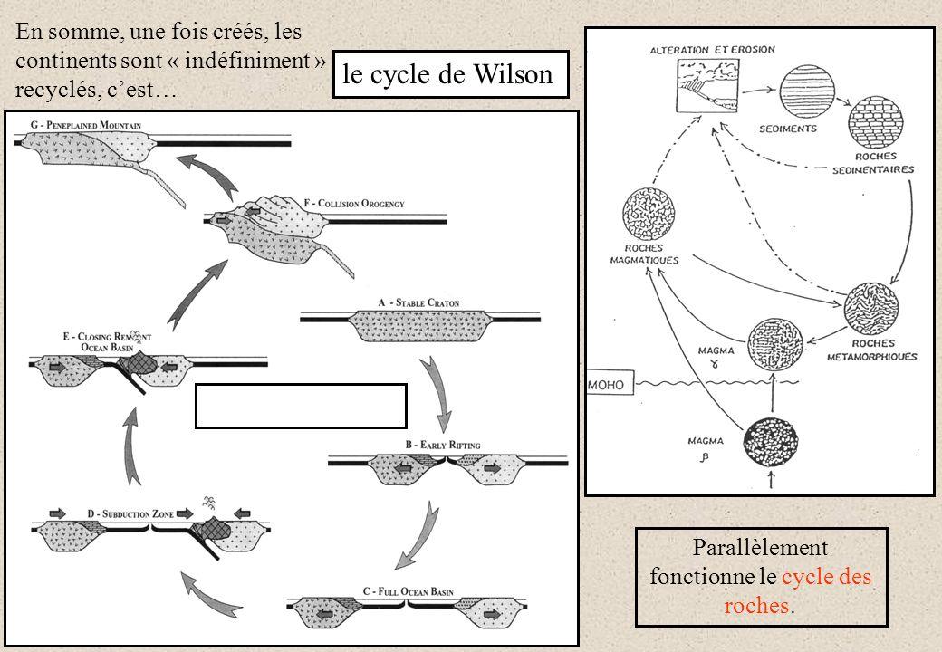 En somme, une fois créés, les continents sont « indéfiniment » recyclés, cest… Parallèlement fonctionne le cycle des roches. le cycle de Wilson