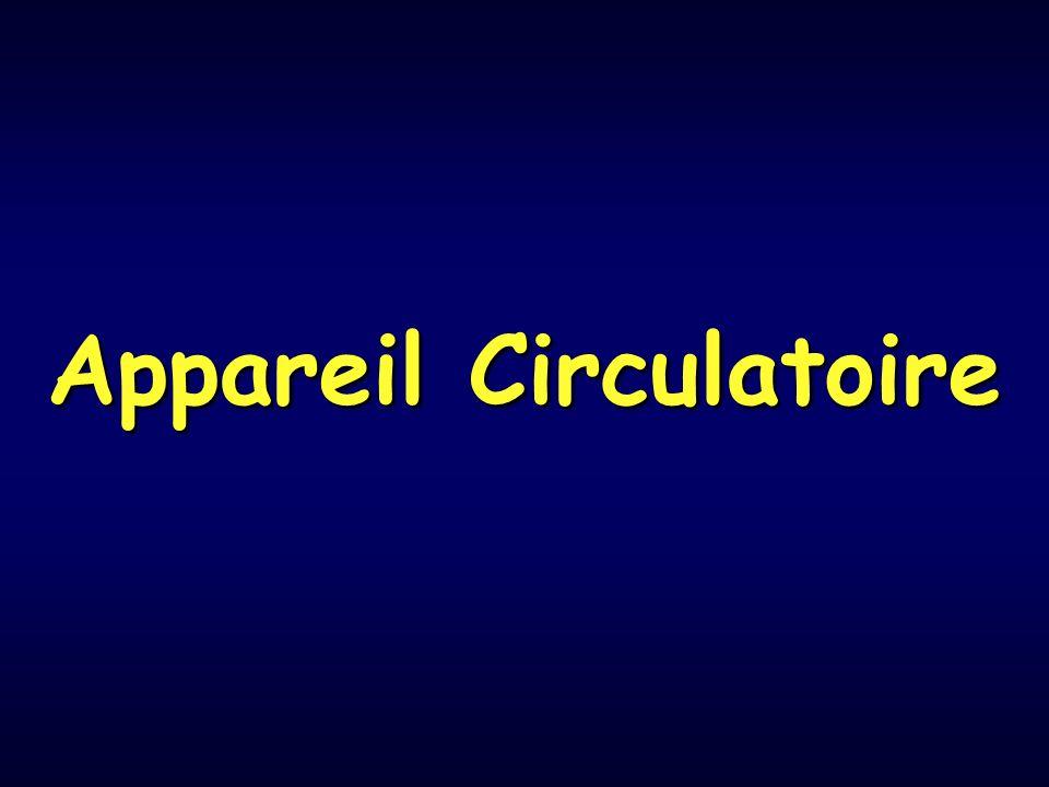 Appareil circulatoire 2 – Structure en fonction du calibre de lartère a- Artérioles Artères dont calibres < 100µm Paroi mince LEI très fine et discontinue LEE absente Média: 1 à 3 couches de cellules