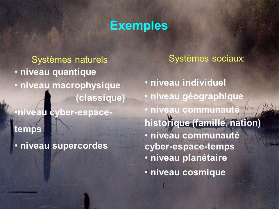 Exemples Systèmes naturels niveau quantique niveau macrophysique (classique) niveau cyber-espace- temps niveau supercordes Systèmes sociaux: niveau in