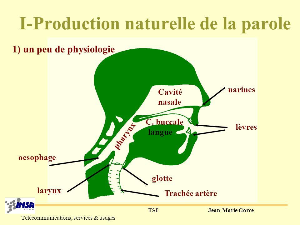 TSIJean-Marie Gorce Télécommunications, services & usages Traitement de la parole -Le codage de la parole-