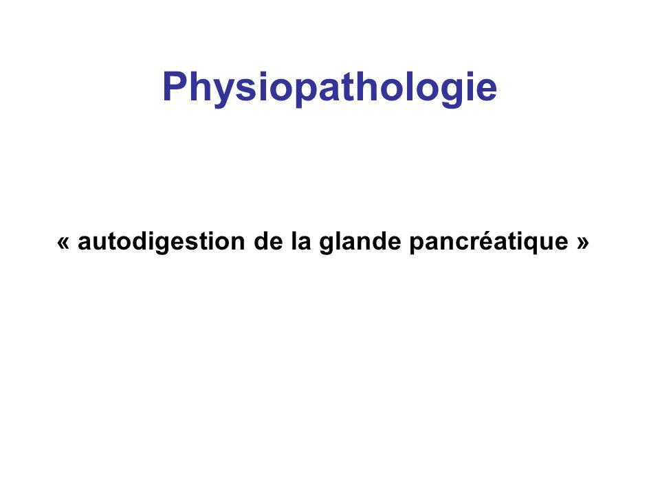Physiopathologie « autodigestion de la glande pancréatique »