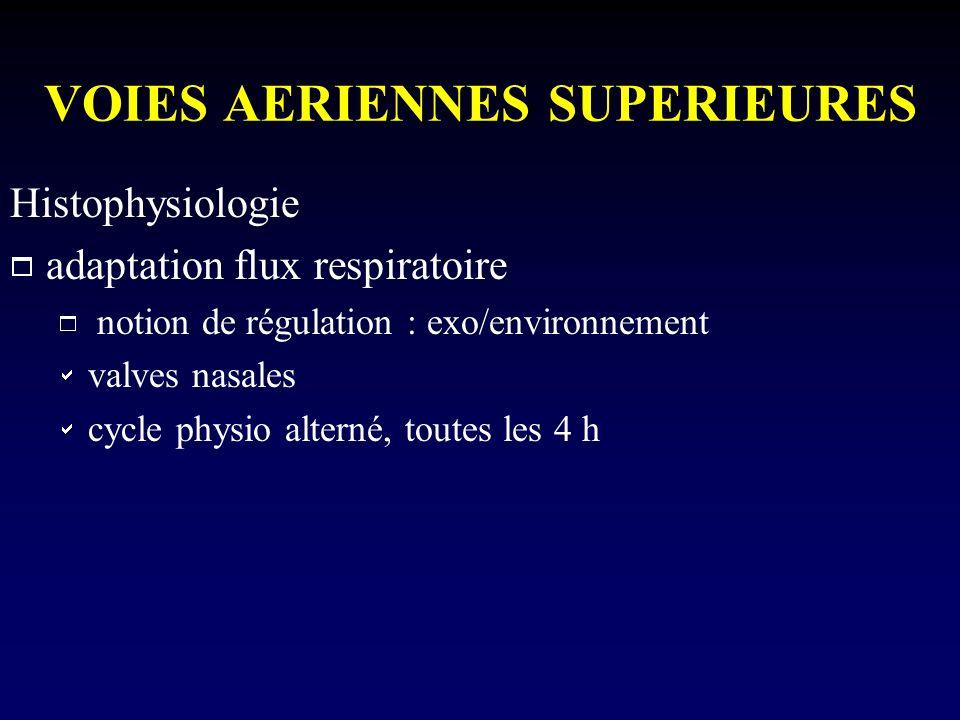 VOIES AERIENNES SUPERIEURES Histophysiologie adaptation flux respiratoire notion de régulation : exo/environnement valves nasales cycle physio alterné