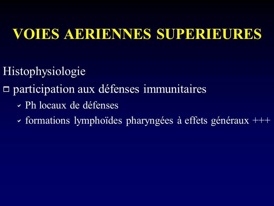 VOIES AERIENNES SUPERIEURES Histophysiologie participation aux défenses immunitaires Ph locaux de défenses formations lymphoïdes pharyngées à effets g