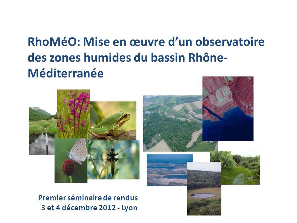 RhoMéO RhoMéO: Mise en œuvre dun observatoire des zones humides du bassin Rhône- Méditerranée Premier séminaire de rendus 3 et 4 décembre 2012 - Lyon