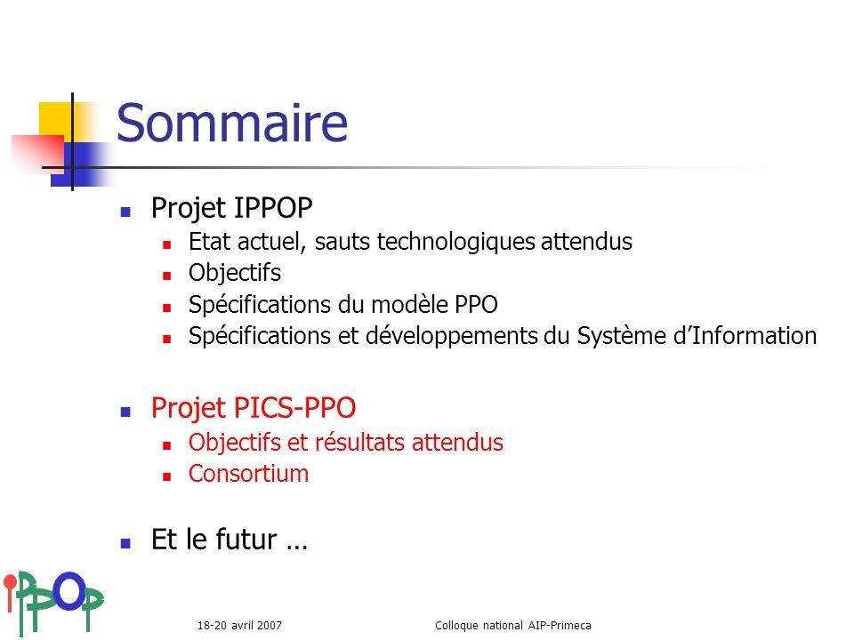 18-20 avril 2007Colloque national AIP-Primeca Sommaire Projet IPPOP Etat actuel, sauts technologiques attendus Objectifs Spécifications du modèle PPO