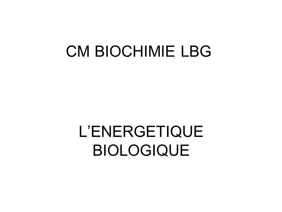 CM BIOCHIMIE LBG LENERGETIQUE BIOLOGIQUE