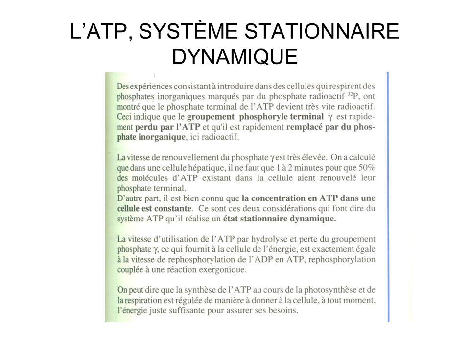 LATP, SYSTÈME STATIONNAIRE DYNAMIQUE