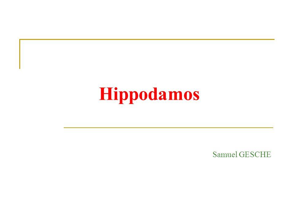 Hippodamos Samuel GESCHE