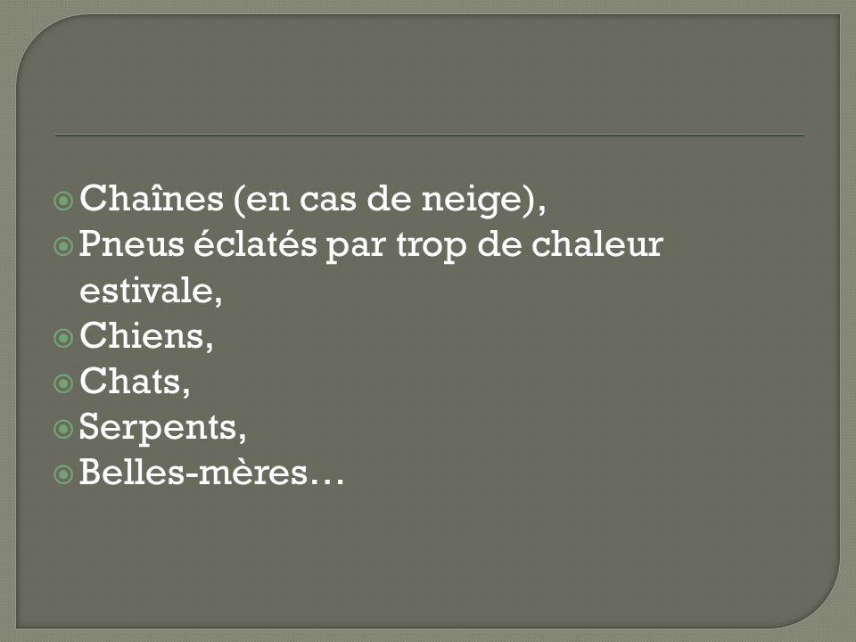 Chaînes (en cas de neige), Pneus éclatés par trop de chaleur estivale, Chiens, Chats, Serpents, Belles-mères…