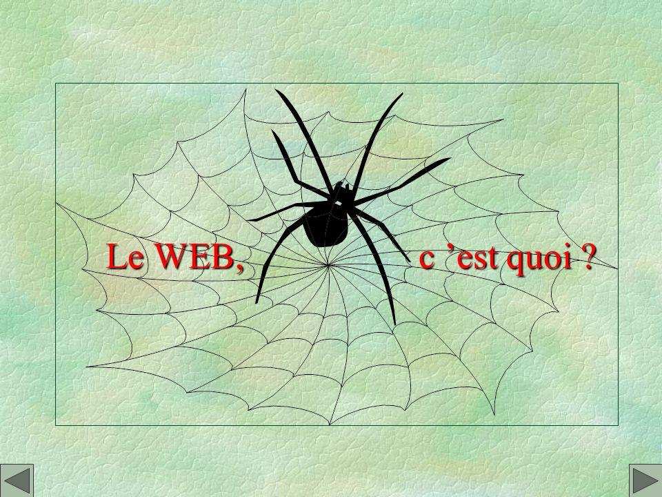 e - SOMMAIRE - Le WEB : cest quoi ? - Se connecter à la carte. - Séquiper dun micro communiquant. - Deux logiciels de base. - Comment ça marche ? - Re