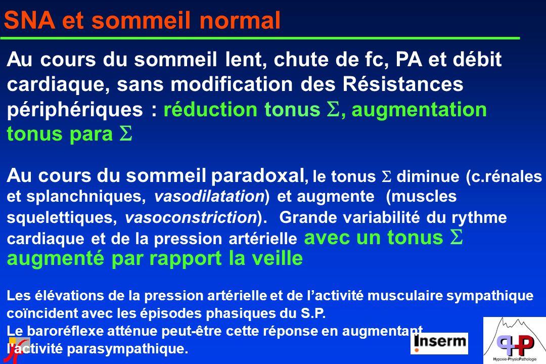 SNA et sommeil normal Au cours du sommeil lent, chute de fc, PA et débit cardiaque, sans modification des Résistances périphériques : réduction tonus,