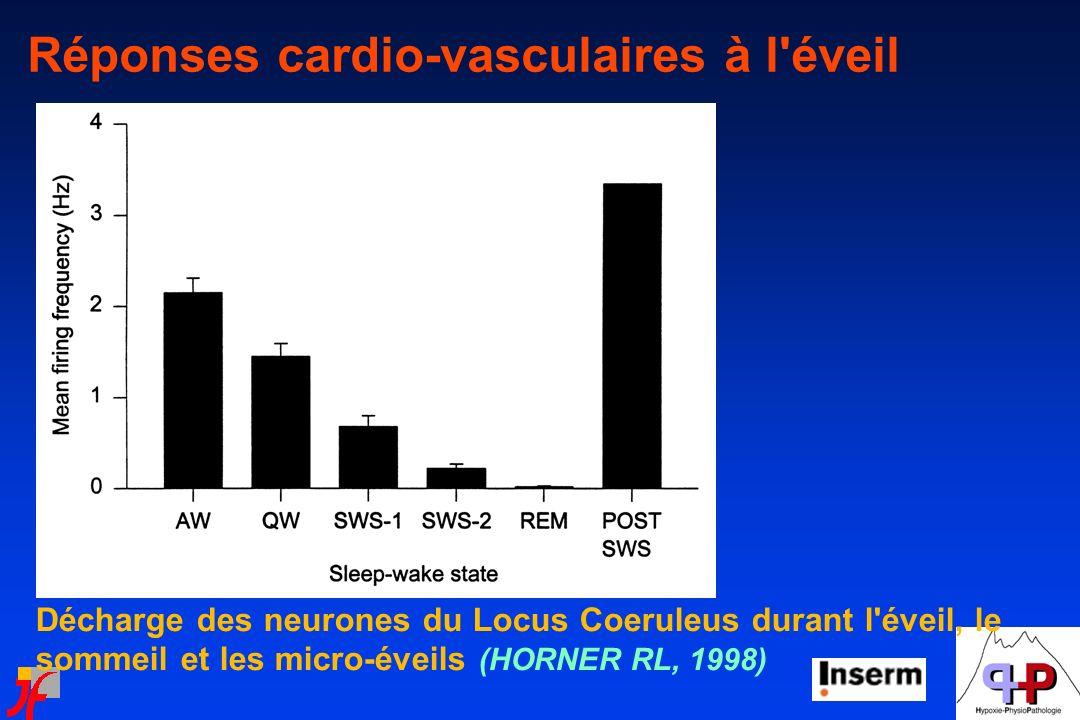Décharge des neurones du Locus Coeruleus durant l'éveil, le sommeil et les micro-éveils (HORNER RL, 1998) Réponses cardio-vasculaires à l'éveil